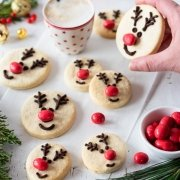 red nosed reindeer cookies